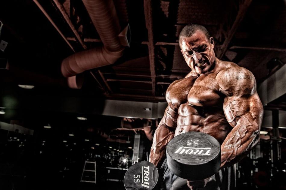Хороший курс стероидов на массу